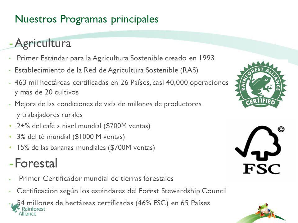 -Agricultura Primer Estándar para la Agricultura Sostenible creado en 1993 Establecimiento de la Red de Agricultura Sostenible (RAS) 463 mil hectáreas
