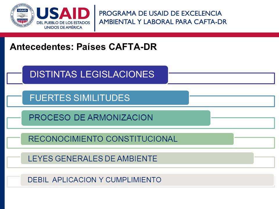 Antecedentes: Países CAFTA-DR DISTINTAS LEGISLACIONES FUERTES SIMILITUDES PROCESO DE ARMONIZACION RECONOCIMIENTO CONSTITUCIONAL LEYES GENERALES DE AMB