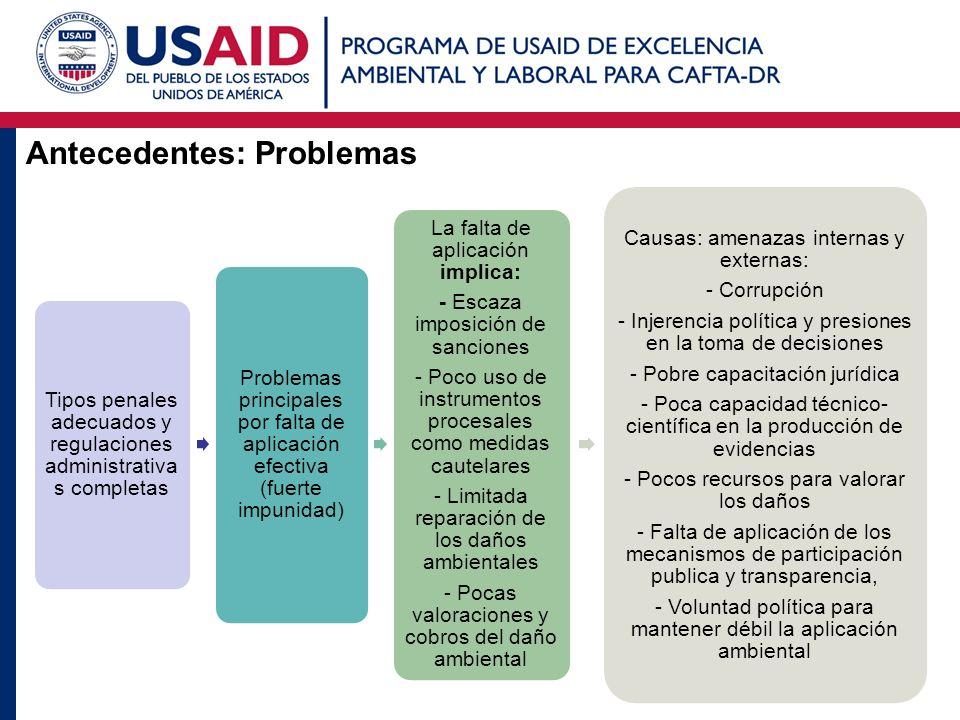 Antecedentes: Problemas Tipos penales adecuados y regulaciones administrativa s completas Problemas principales por falta de aplicación efectiva (fuer
