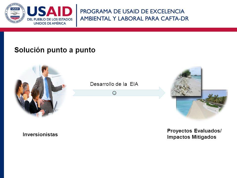 Solución punto a punto Inversionistas Desarrollo de la EIA Proyectos Evaluados/ Impactos Mitigados