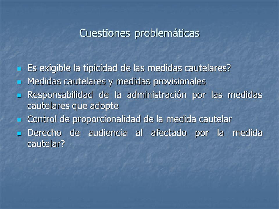 Cuestiones problemáticas Es exigible la tipicidad de las medidas cautelares? Es exigible la tipicidad de las medidas cautelares? Medidas cautelares y