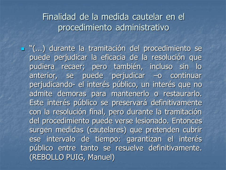 Finalidad de la medida cautelar en el procedimiento administrativo (...) durante la tramitación del procedimiento se puede perjudicar la eficacia de l