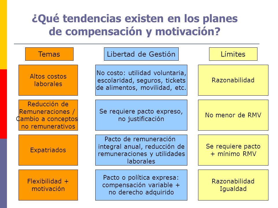 TemasLibertad de GestiónLímites Altos costos laborales Expatriados Flexibilidad + motivación No costo: utilidad voluntaria, escolaridad, seguros, tick