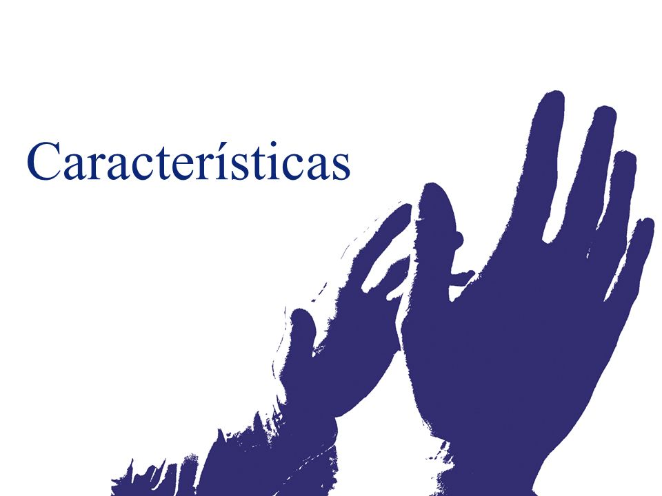 ©2003 Firm Name/Legal Entity Presentation Name (View / Header and Footer) 37 Características