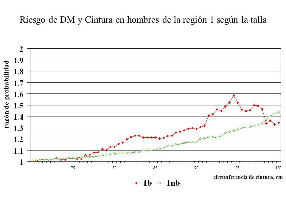 Riesgo de DM y Cintura en hombres de la región 1 según la talla razón de probabilidad circunferencia de cintura, cm