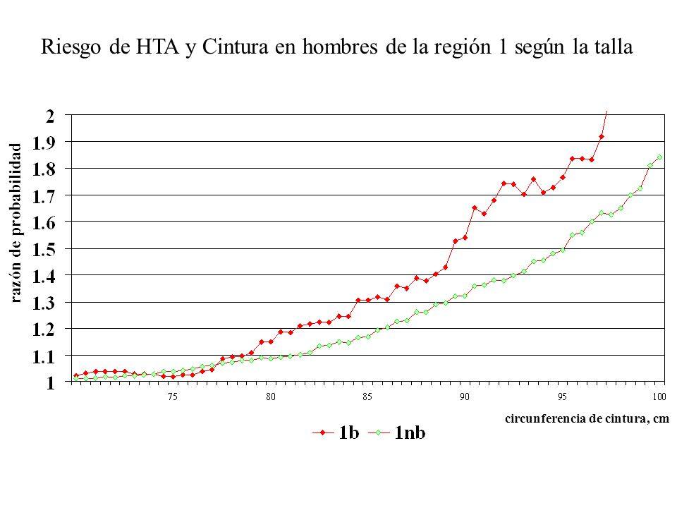 Riesgo de HTA y Cintura en hombres de la región 1 según la talla razón de probabilidad circunferencia de cintura, cm