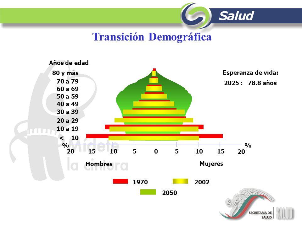 Transición Demográfica 1970 Mujeres Hombres 2002 2050 Años de edad 30 a 39 40 a 49 50 a 59 60 a 69 70 a 79 80 y más 20 a 29 < 10 10 a 19 % 010 20 1020