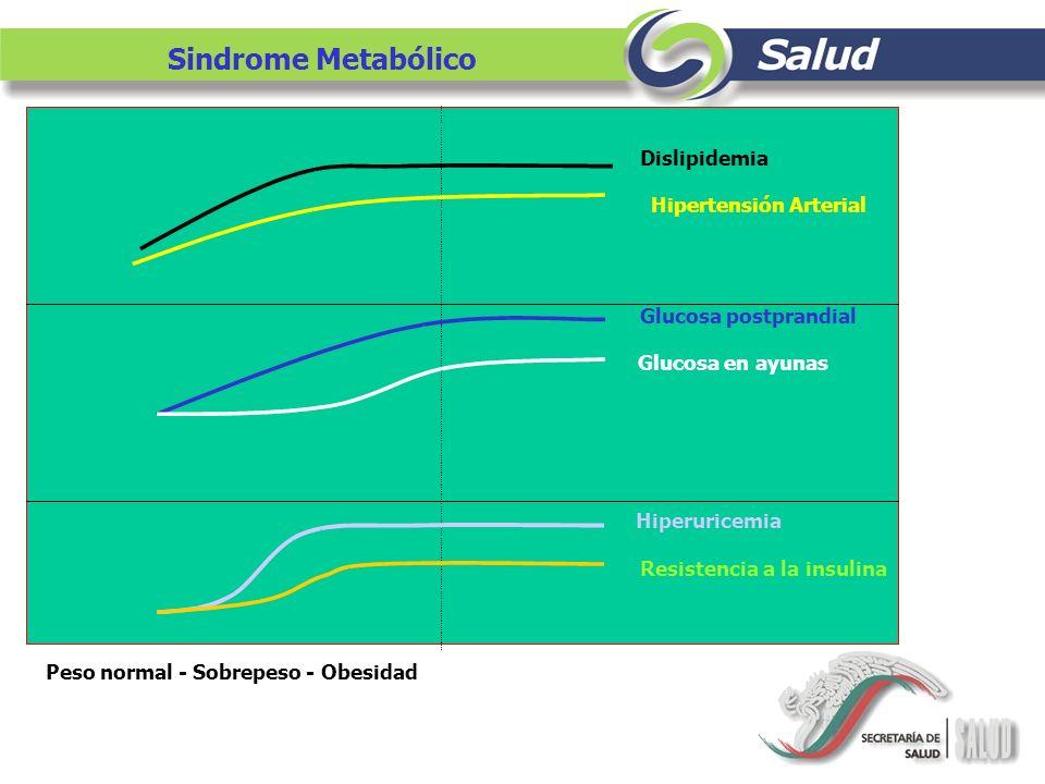 Sindrome Metabólico Peso normal - Sobrepeso - Obesidad Dislipidemia Hipertensión Arterial Glucosa postprandial Glucosa en ayunas Hiperuricemia Resiste