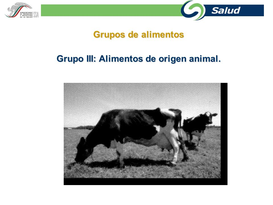 Grupos de alimentos Grupo II: Cereales, granos, leguminosas y tubérculos.