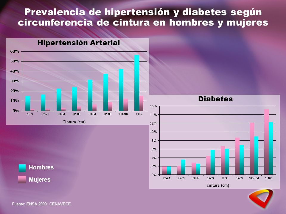 Prevalencia de hipertensión y diabetes según circunferencia de cintura en hombres y mujeres Cintura (cm) Mujeres Hombres Fuente: ENSA 2000. CENAVECE.