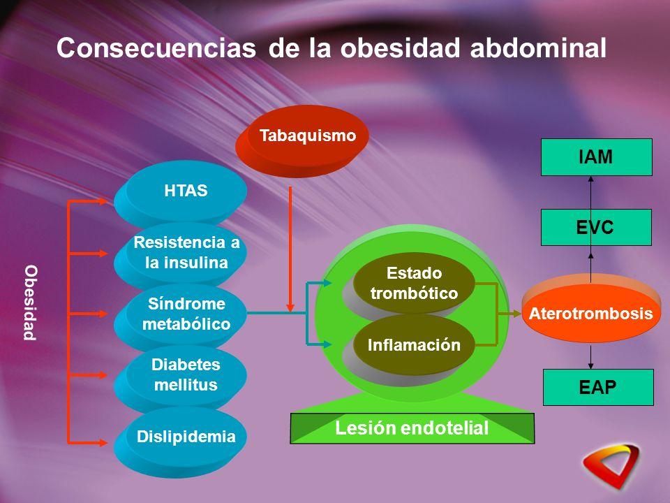 Consecuencias de la obesidad abdominal Obesidad HTAS Resistencia a la insulina Síndrome metabólico Diabetes mellitus Dislipidemia Aterotrombosis Tabaquismo Lesión endotelial Estado trombótico Inflamación EVC IAM EAP