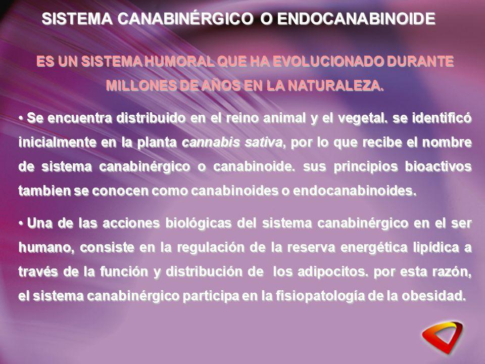 Manejo Integral del riesgo Cardiometabólico Rimonabant