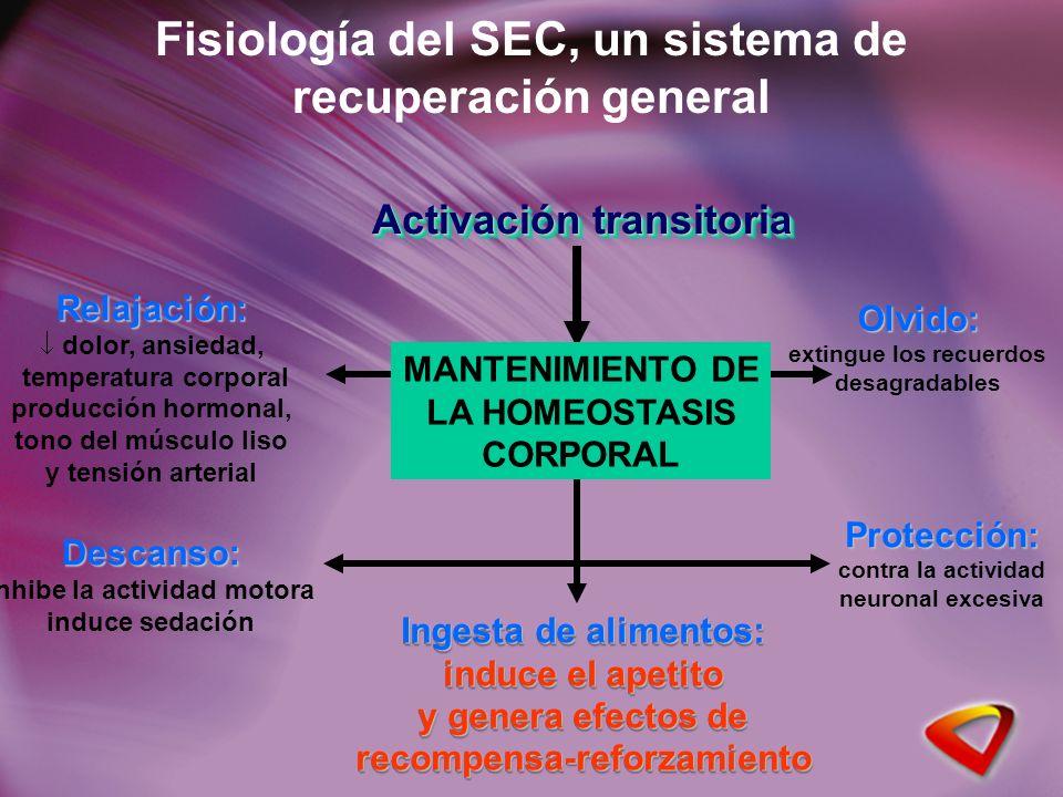 Fisiología del SEC, un sistema de recuperación general Activación transitoria Relajación: dolor, ansiedad, temperatura corporal producción hormonal, t