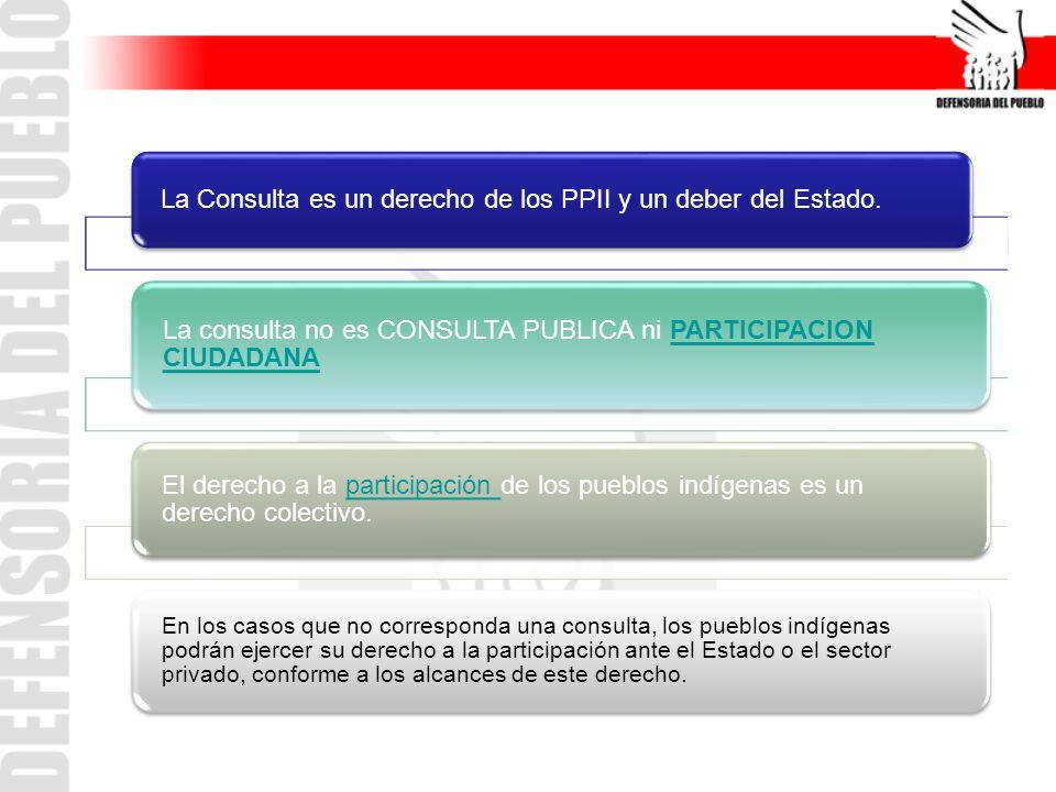 DerechoParticipación ciudadanaParticipación en la gestión ambientalConsulta (C169) Finalidad - Participar en la vida política, económica, social y cultural del país.