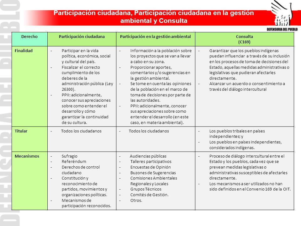 DerechoParticipación ciudadanaParticipación en la gestión ambientalConsulta (C169) Finalidad - Participar en la vida política, económica, social y cul