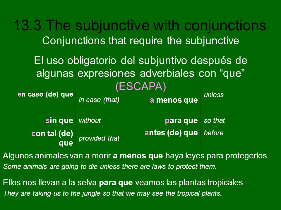 13.3 The subjunctive with conjunctions Algunos animales van a morir a menos que haya leyes para protegerlos. Some animals are going to die unless ther