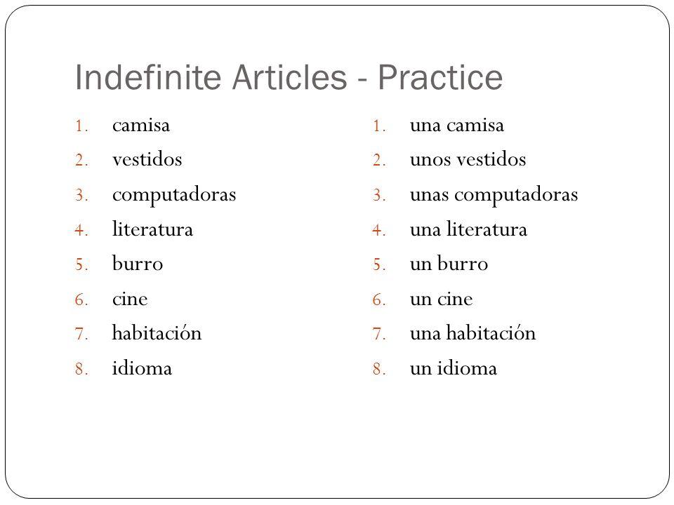 Indefinite Articles - Practice 1. camisa 2. vestidos 3. computadoras 4. literatura 5. burro 6. cine 7. habitación 8. idioma 1. una camisa 2. unos vest