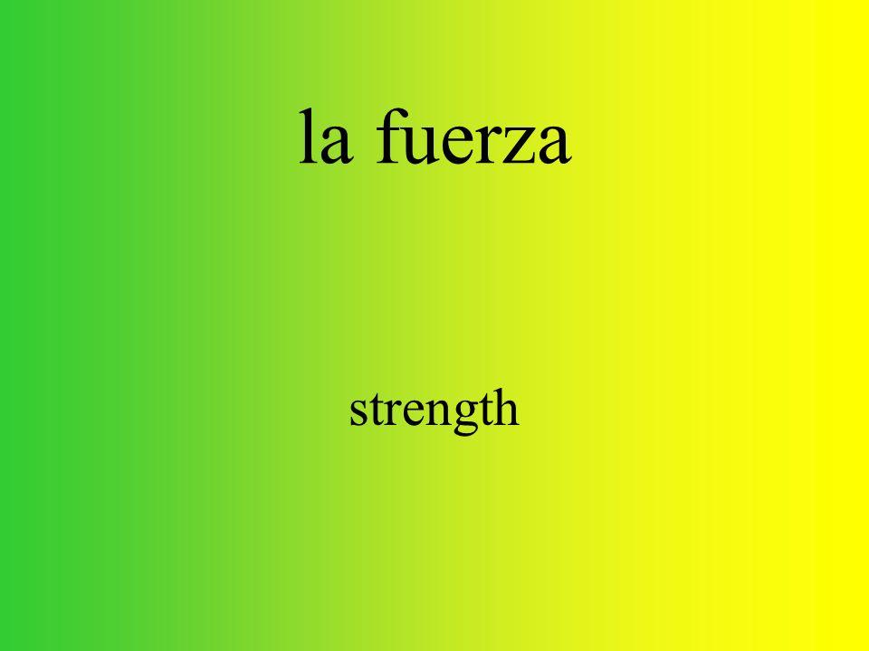 flexionar to flex, to stretch