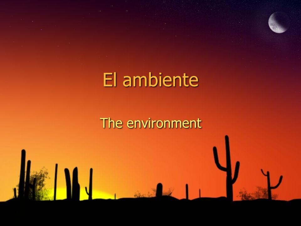 El ambiente The environment