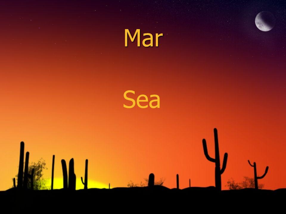Mar Sea