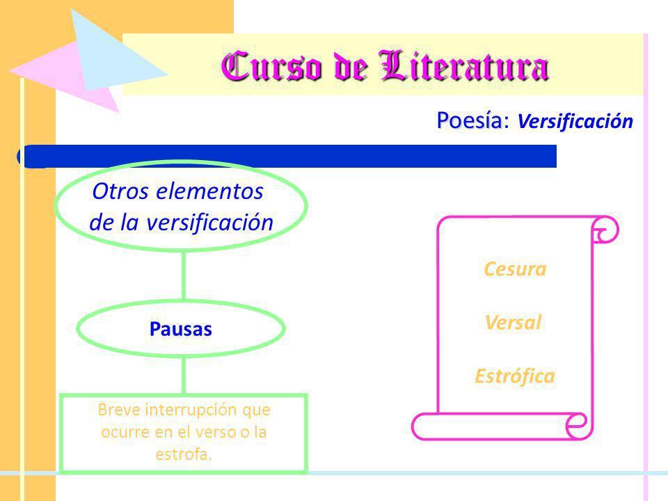 Curso de Literatura Poesía Poesía: Versificación Otros elementos de la versificación Pausas Breve interrupción que ocurre en el verso o la estrofa. Ce