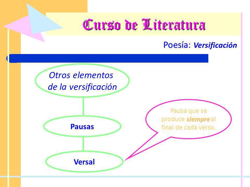 Curso de Literatura Poesía Poesía: Versificación Otros elementos de la versificación Pausas Versal siempre Pausa que se produce siempre al final de ca