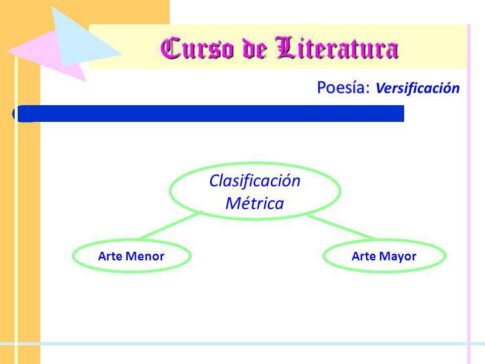 Curso de Literatura Poesía Poesía: Versificación Otros elementos de la versificación Pausas Cesura Pausa que divide al verso en dos partes.