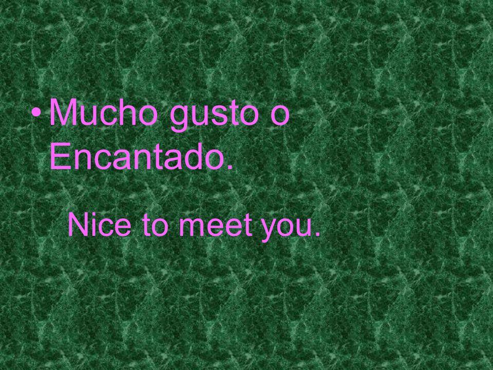 Mucho gusto o Encantado. Nice to meet you.