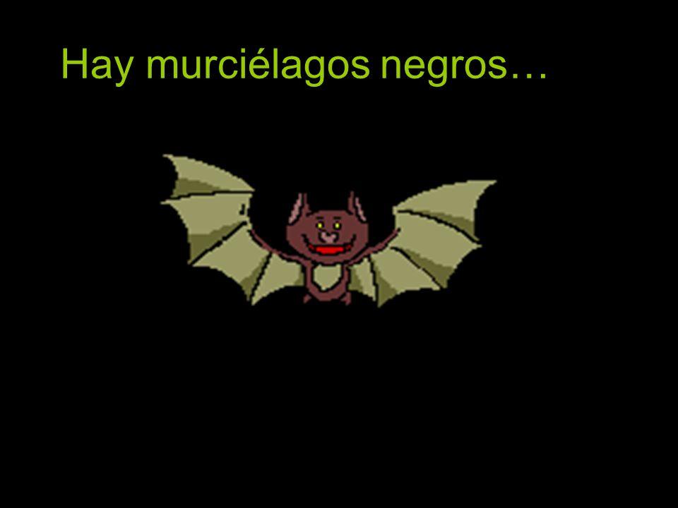 Hay murciélagos negros…