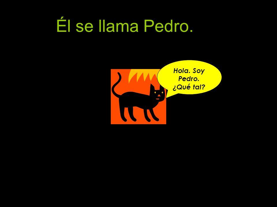 Él se llama Pedro. Hola. Soy Pedro. ¿Qué tal?