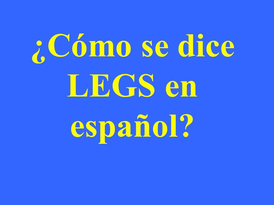 ¿Cómo se dice LEGS en español?