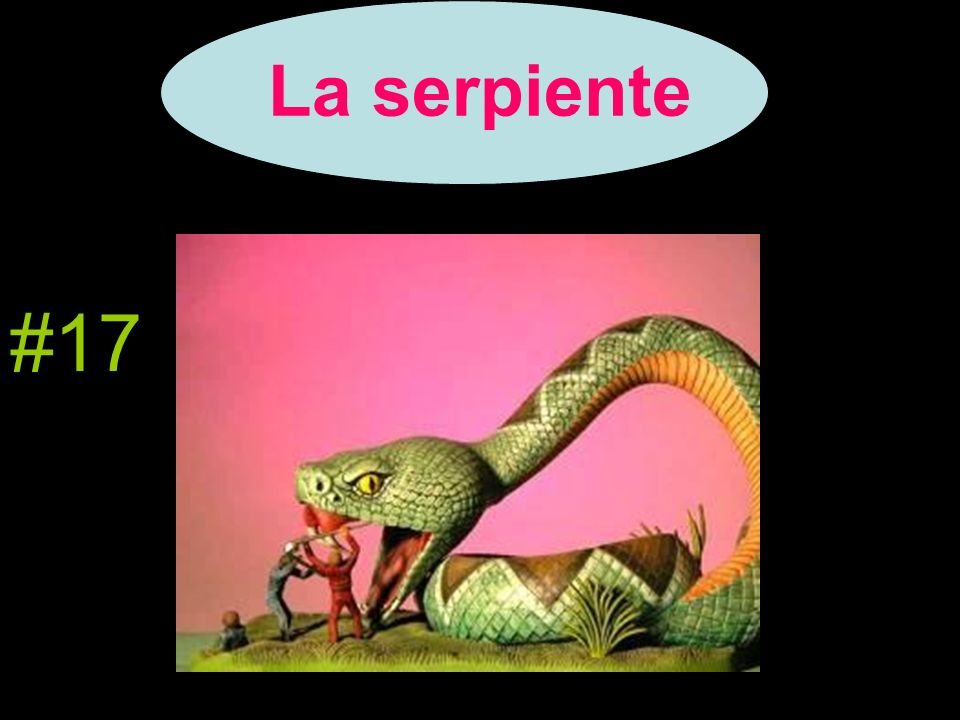 La serpiente #17