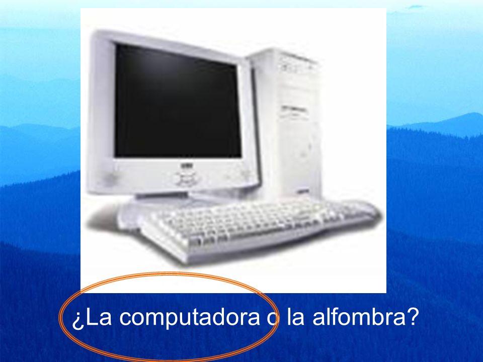 ¿La computadora o la alfombra?