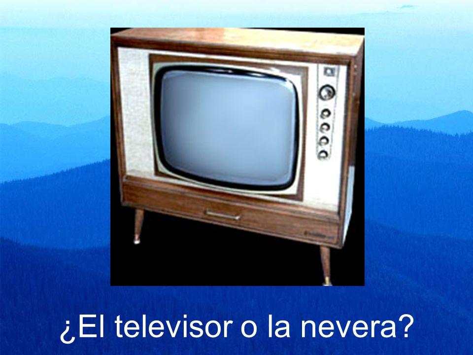 ¿El televisor o la nevera?