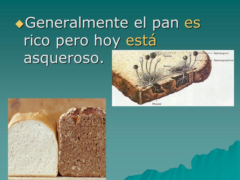 Generalmente el pan es rico pero hoy está asqueroso.
