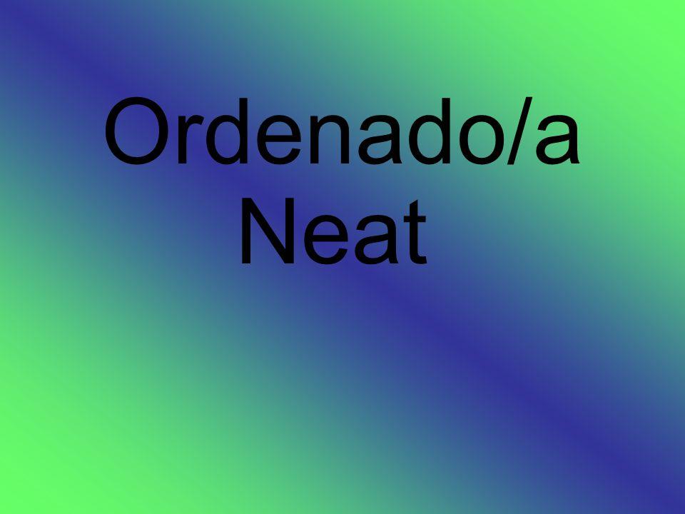 Ordenado/a Neat