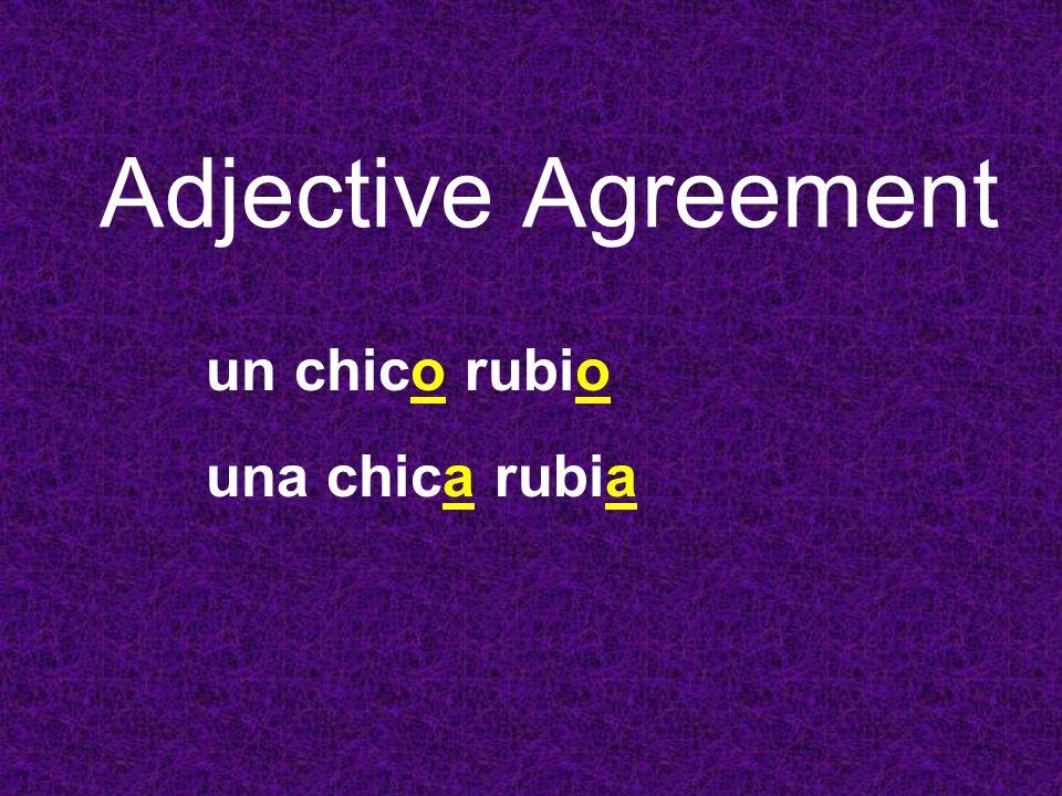 Adjective Agreement un chico rubio una chica rubia