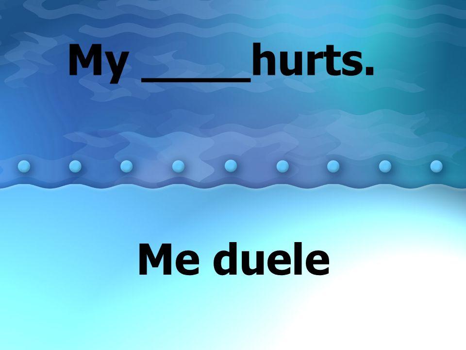 My ____hurts. Me duele