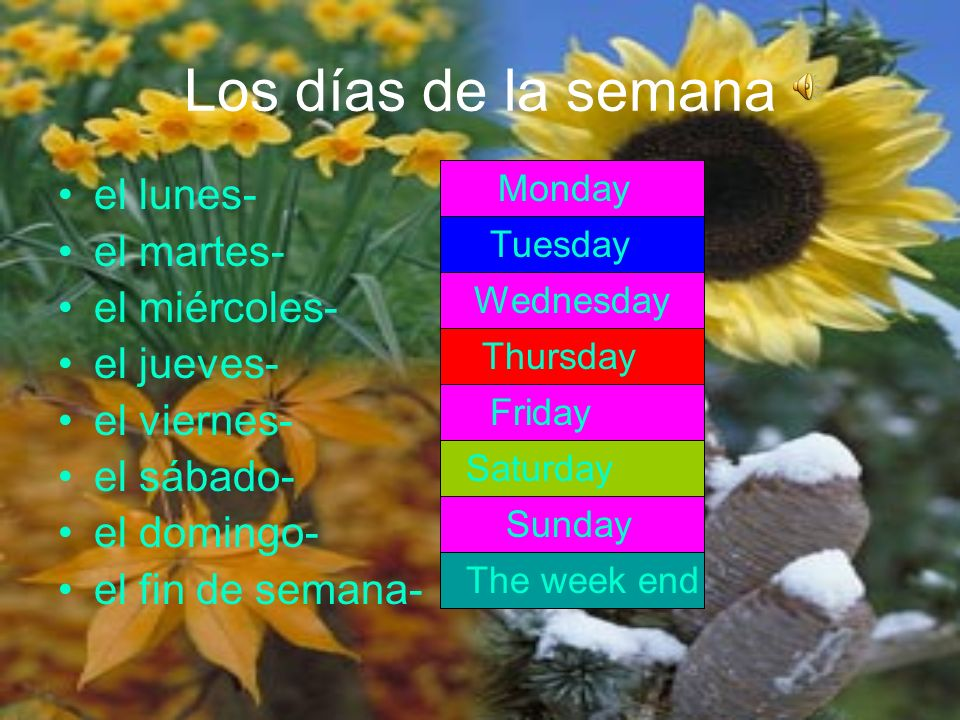 Click on the speaker icons for the meanings.¿Qué día es hoy.