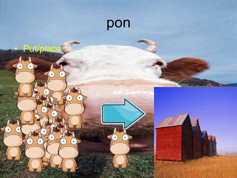 pon Put/place