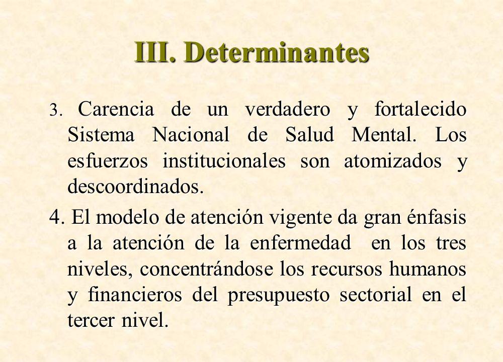 3. Carencia de un verdadero y fortalecido Sistema Nacional de Salud Mental. Los esfuerzos institucionales son atomizados y descoordinados. 4. El model