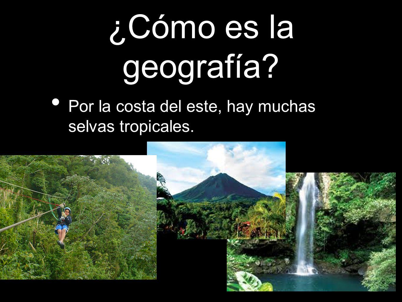¿Cómo es la geografía? Por la costa del este, hay muchas selvas tropicales.