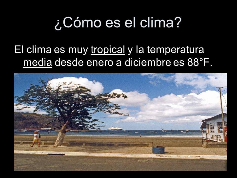 ¿Cómo es el clima? El clima es muy tropical y la temperatura media desde enero a diciembre es 88°F.