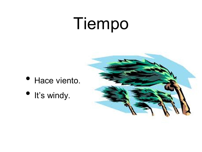 Tiempo Hace viento. Its windy.
