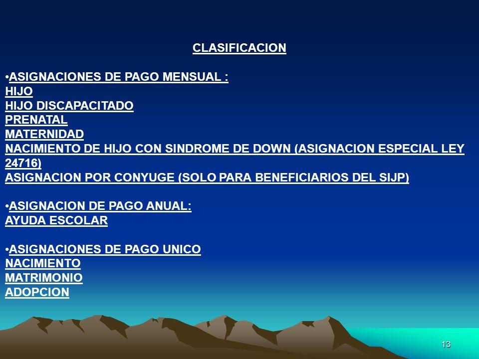 13 CLASIFICACION ASIGNACIONES DE PAGO MENSUAL : HIJO HIJO DISCAPACITADO PRENATAL MATERNIDAD NACIMIENTO DE HIJO CON SINDROME DE DOWN (ASIGNACION ESPECI