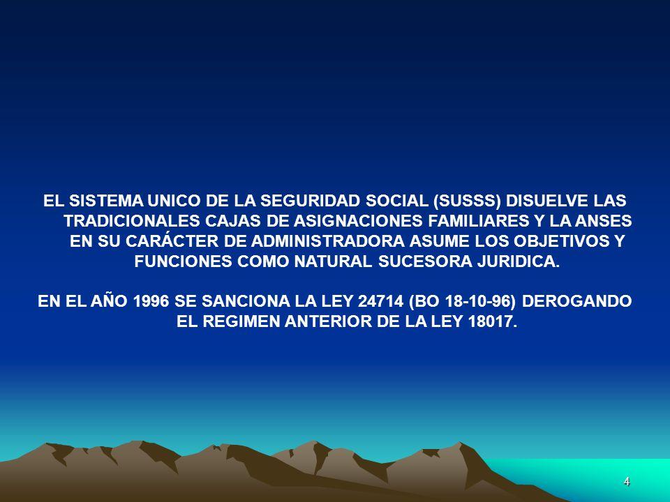 4 EL SISTEMA UNICO DE LA SEGURIDAD SOCIAL (SUSSS) DISUELVE LAS TRADICIONALES CAJAS DE ASIGNACIONES FAMILIARES Y LA ANSES EN SU CARÁCTER DE ADMINISTRAD