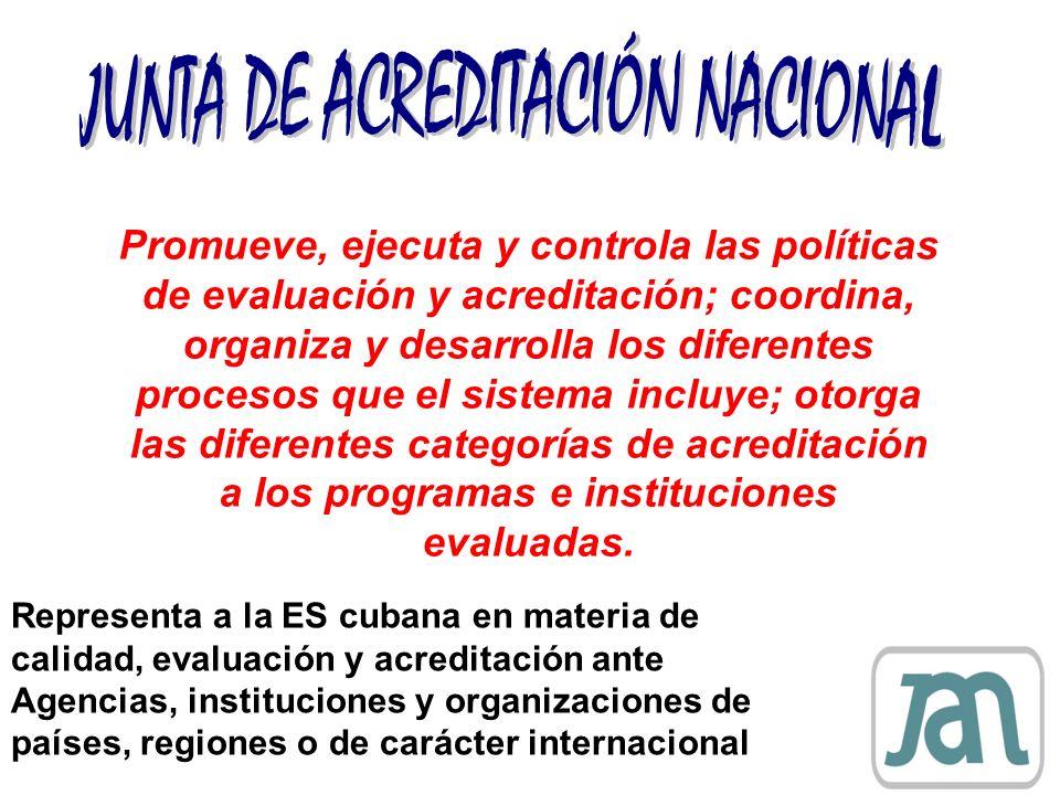Promueve, ejecuta y controla las políticas de evaluación y acreditación; coordina, organiza y desarrolla los diferentes procesos que el sistema incluy