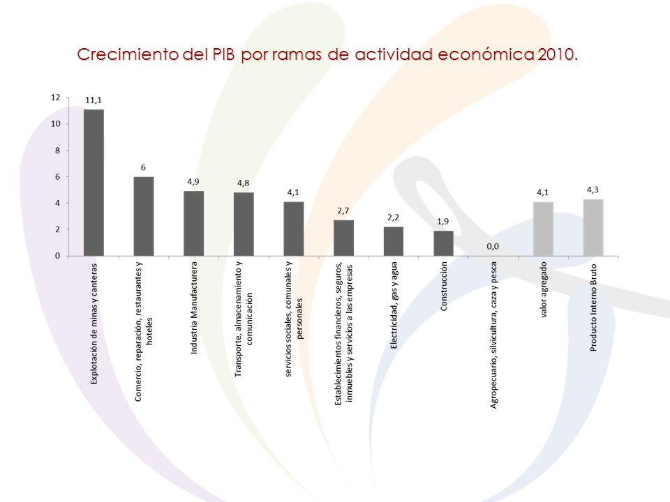 Crecimiento del PIB por ramas de actividad económica 2010.