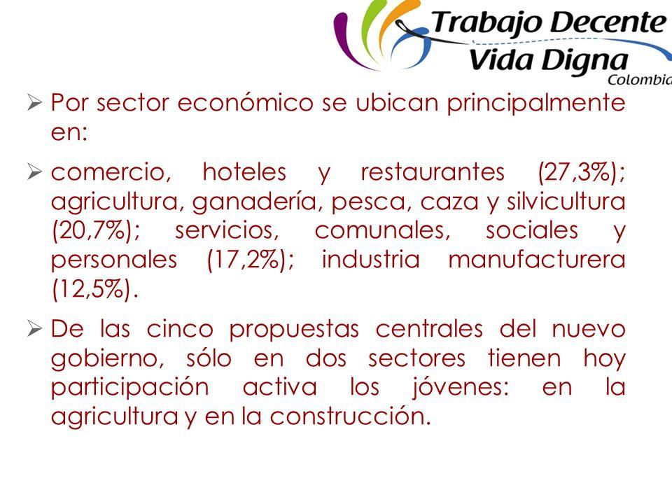 Por sector económico se ubican principalmente en: comercio, hoteles y restaurantes (27,3%); agricultura, ganadería, pesca, caza y silvicultura (20,7%); servicios, comunales, sociales y personales (17,2%); industria manufacturera (12,5%).