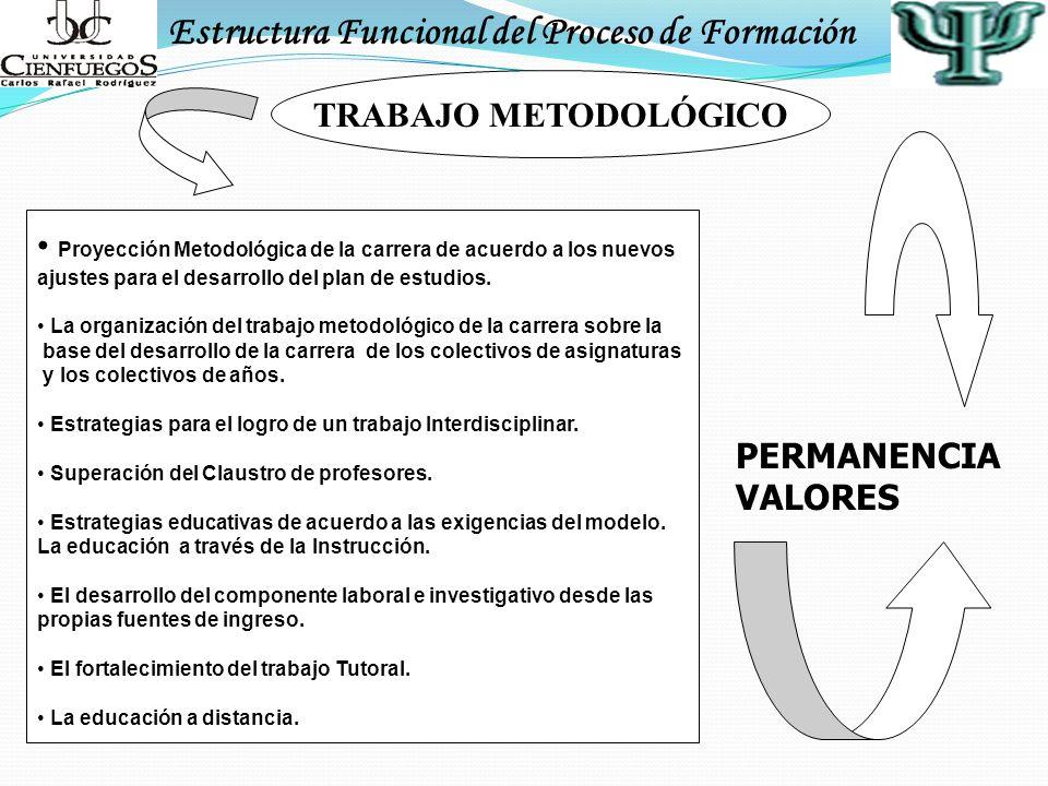 Estructura Funcional del Proceso de Formación TRABAJO METODOLÓGICO Proyección Metodológica de la carrera de acuerdo a los nuevos ajustes para el desar